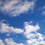 my sky 2014