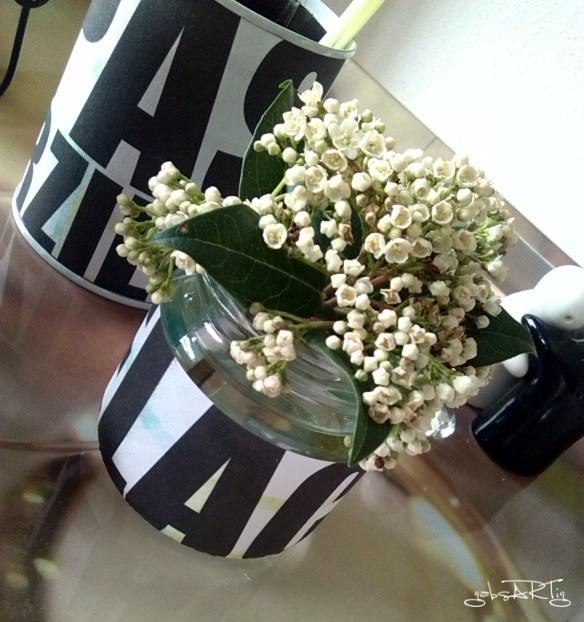 DIY - Gläser mit Milch bekleben